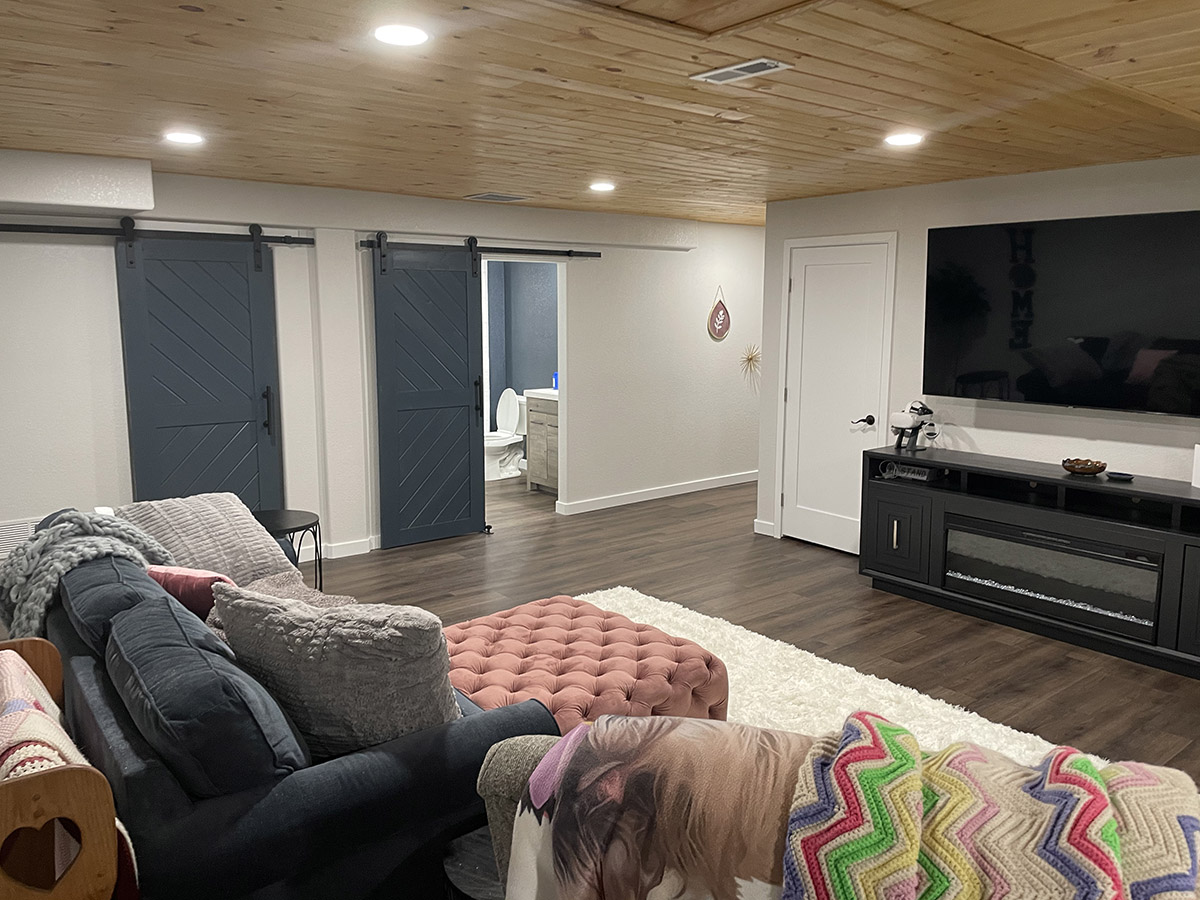 Finished Basement and Barn Doors